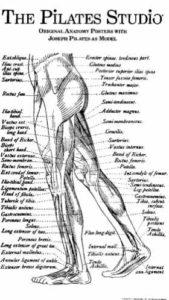 Pilates Studio - Joseph Pilates 1